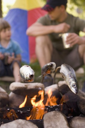 aaa: Father and son grilling fish over camp-fire