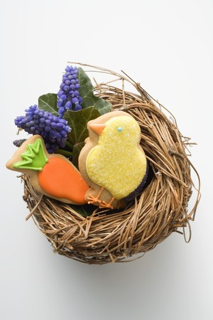 figurative: Easter biscuits (chick, carrot) & grape hyacinths in Easter nest