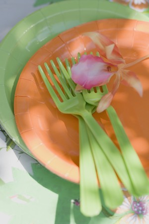 paper plates: Paper plates and green plastic forks for a summer party LANG_EVOIMAGES