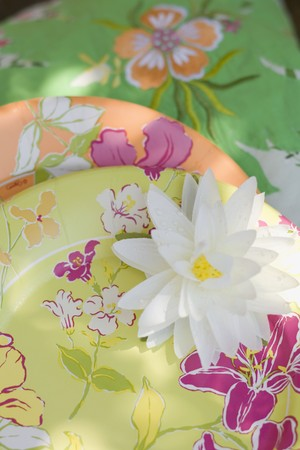 paper plates: Summer party decorations: water lily, paper plates