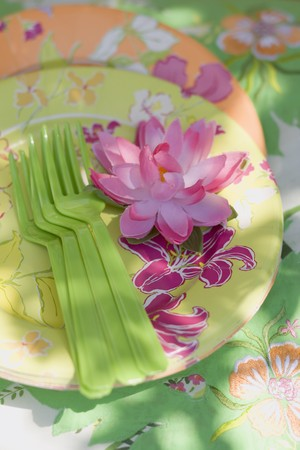 nymphaea odorata: Summer party decorations: water lily, paper plates, plastic forks LANG_EVOIMAGES
