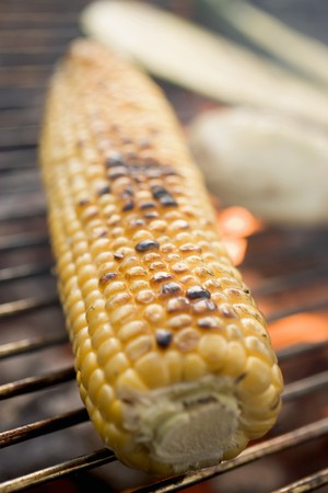 qs: Corn on the cob on a barbecue