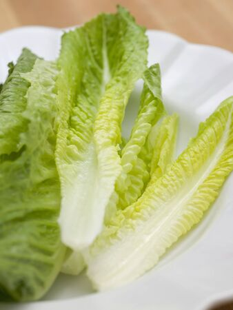 romaine: Romaine lettuce leaves on a white plate LANG_EVOIMAGES