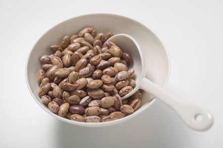 borlotti beans: Borlotti beans in bowl with spoon LANG_EVOIMAGES