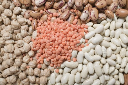 borlotti beans: Borlotti beans, white beans, chick-peas and red lentils