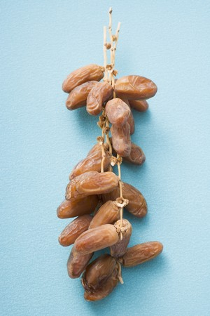 dactylifera: Dates on the stalk LANG_EVOIMAGES