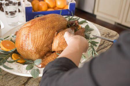 garnishing: Garnishing roast turkey on platter LANG_EVOIMAGES