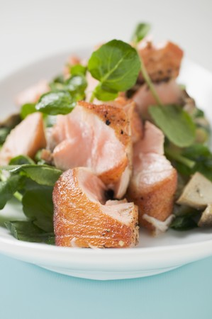 water cress: Salad leaves with fried salmon and mushrooms (detail) LANG_EVOIMAGES