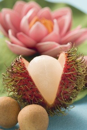 nymphaea odorata: Rambutan (cut open), longans, water lily in background LANG_EVOIMAGES