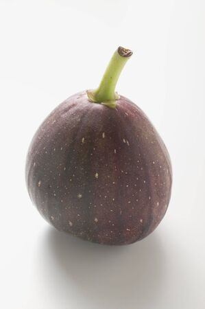 purple fig: Purple fig