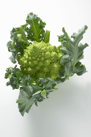 romanesco: Romanesco broccoli with leaves