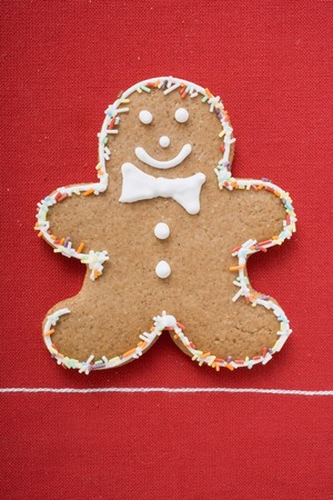jimmies: Gingerbread man decorated with sprinkles