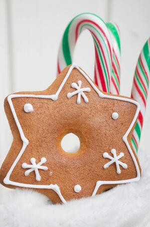 wellie: Gingerbread star and candy canes in a boot