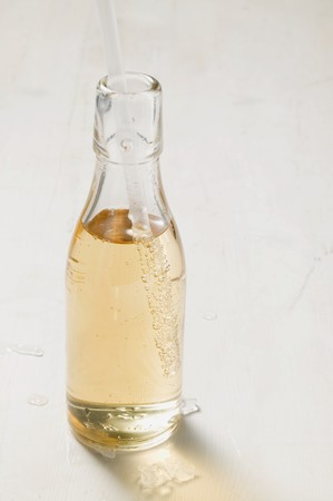 soda pops: Fizzy drink in bottle with straw LANG_EVOIMAGES