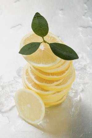 lemon slices: Fette di limone, accatastati, circondato da cubetti di ghiaccio