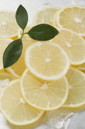 lemon slices: Fette di limone circondato da cubetti di ghiaccio LANG_EVOIMAGES