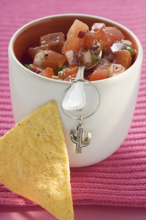 nacho: Tomato salsa in pot with spoon, nacho beside it (Mexico) LANG_EVOIMAGES