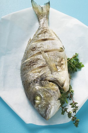 sea bream: Whole fried sea bream on paper LANG_EVOIMAGES