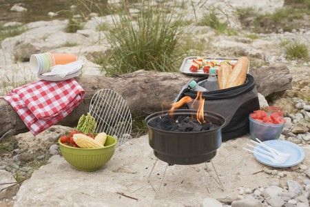 river bank: Barbecue on a river bank