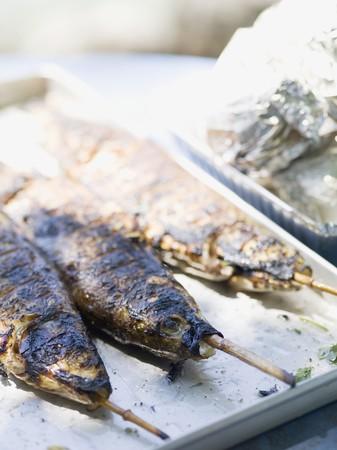 salmo trutta: Grilled trout