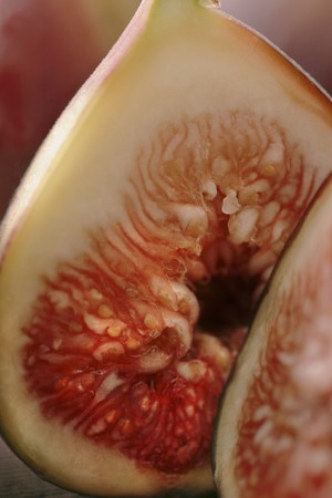 halved: Halved fig (close-up)