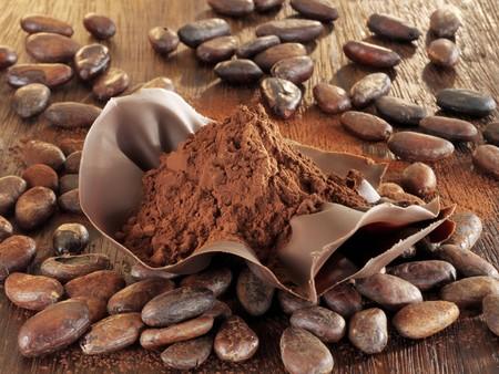 cacao beans: Polvo de cacao en concha de chocolate, granos de cacao LANG_EVOIMAGES