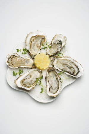 crushed ice: Fresh oysters with lemon on crushed ice LANG_EVOIMAGES