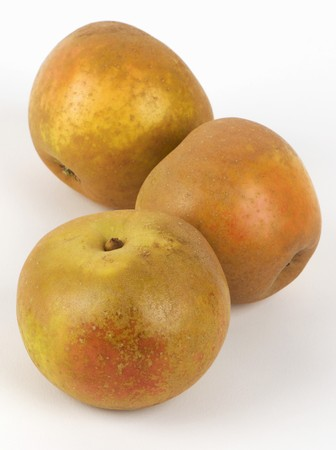 russet: Three Russet apples
