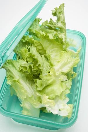 tupperware: Lettuce in food storage box LANG_EVOIMAGES