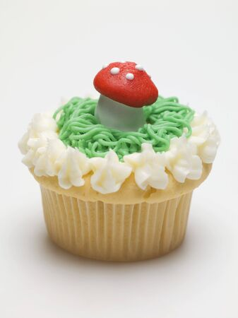 muscaria: Cupcake with fly agaric mushroom for New Years Eve LANG_EVOIMAGES
