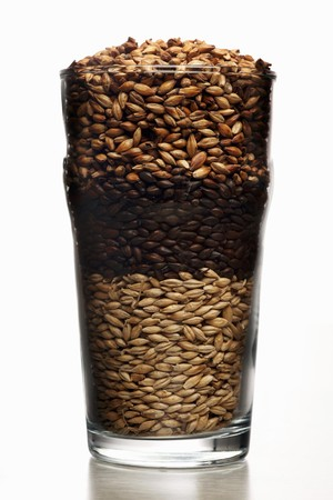 malted: Pint beer glass filled with malted barley (roasted to different degrees)