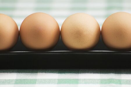 brownness: Row of Brown Eggs on Green and White Table Cloth LANG_EVOIMAGES