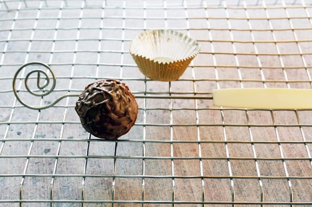 chocolate truffle: A chocolate truffle on a metal rack LANG_EVOIMAGES