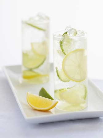 soda pops: Two Glasses of Seltzer Water with Lemon and Lime Slices LANG_EVOIMAGES