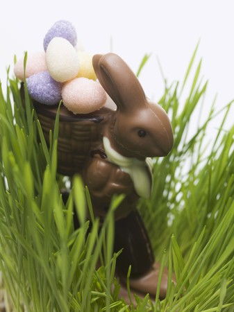 sweet grasses: Chocolate Easter Bunny with sugar eggs in grass LANG_EVOIMAGES