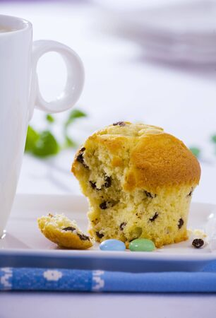 partly: A muffin, partly eaten LANG_EVOIMAGES