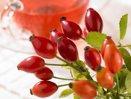rea: Fresh rosehips with a cup of rosehip rea in the background
