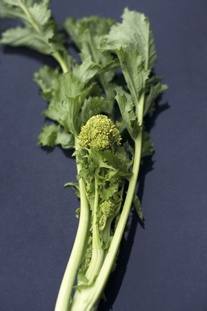 comida: Broccoli rabe