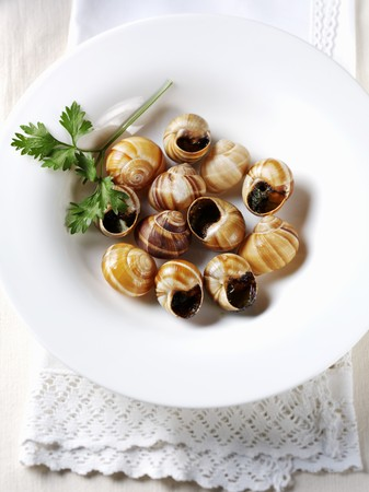 petroselinum sativum: Cooked snails with parsley and garlic LANG_EVOIMAGES