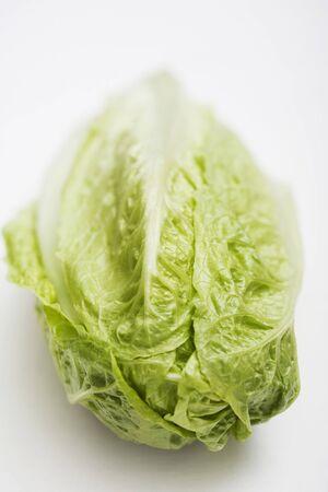 cos: A romaine lettuce