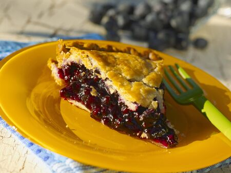 blueberry pie: Slice of Organic Blueberry Pie LANG_EVOIMAGES
