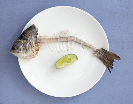 overs: Fish bones with head and tail on plate (overhead view)