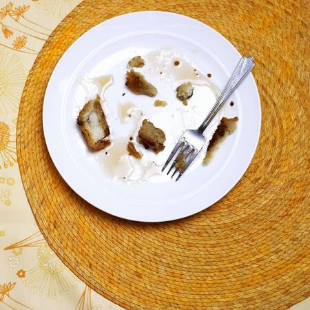 leftovers: Remains of French Toast on a Plate; Fork