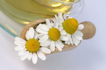 german chamomile: Camomile blossoms with tea
