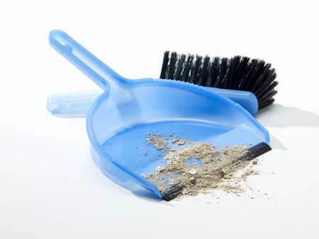 cleansed: Dustpan and brush with floor sweepings LANG_EVOIMAGES