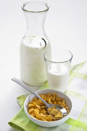 cornflakes: Bowl of cornflakes and milk LANG_EVOIMAGES