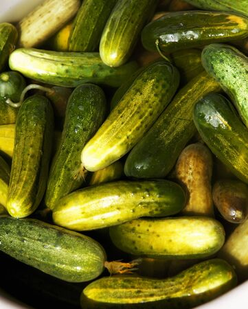 pickling: Cucumbers in Pickling Marinade