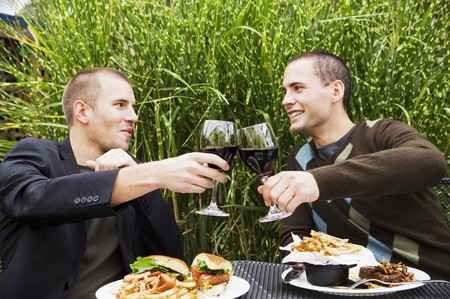 connoisseurs: Two young men clinking glasses of red wine LANG_EVOIMAGES