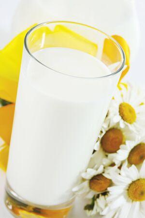 marguerites: Milk in glass, marguerites beside it