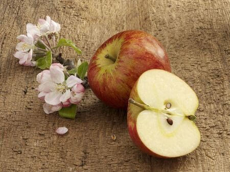 pip: An apple, apple blossoms and half an apple